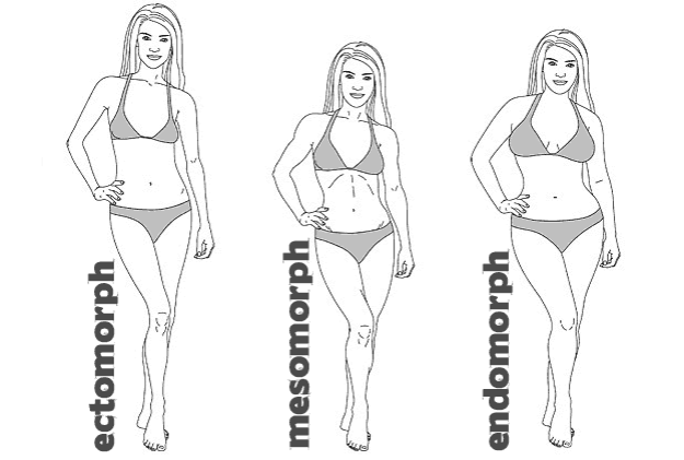 female-body-types