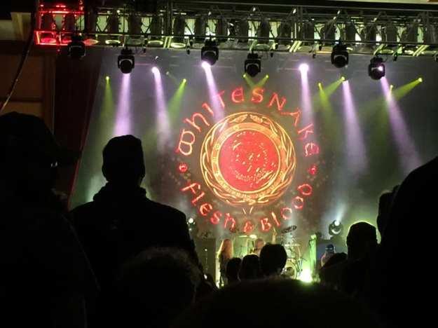 Whitesnake1